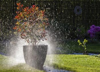 L'arrosage enterré de jardin, le must have de l'efficacité