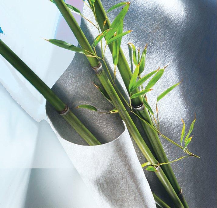 Protection pour vos plantes et barrière aux racines fugitives -