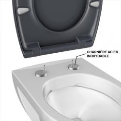 Abattant déclipsable frein de chute plastique thermodur Click & clean anthracite de marque BEMIS, référence: B5920100