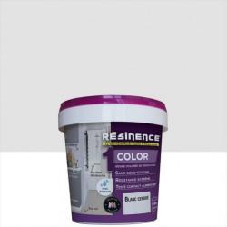 Résine colorée Color RESINENCE, Blanc cendré, 0.25 l de marque RESINENCE, référence: B6252000
