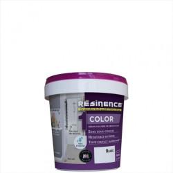 Résine colorée Color RESINENCE, Blanc, 0.25 l de marque RESINENCE, référence: B6252100
