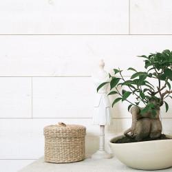 Lambris bois épicéa blanc brut de sciage, L.205 x l.13.5 cm, Ep.12 mm de marque Centrale Brico, référence: B6536700