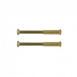 Lot de 2 vis acier laitonné, L.4.5 x l.0.7 de marque Centrale Brico, référence: B6554300