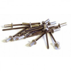 100 rivets étanches alu/acier (tête plate) Ø 3,2 x 8 mm de marque TECHMAN, référence: B1727200