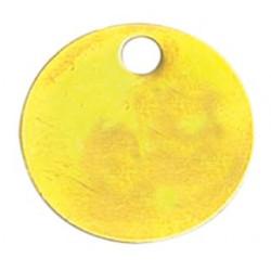 Jeton neutre en laiton Ø 30 mm de marque OUTIFRANCE , référence: B1807100