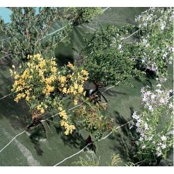 """Toile de paillage tissée spécial paysages """"Agrosol"""" 1,25 x 10 m de marque NORTENE , référence: J4671300"""