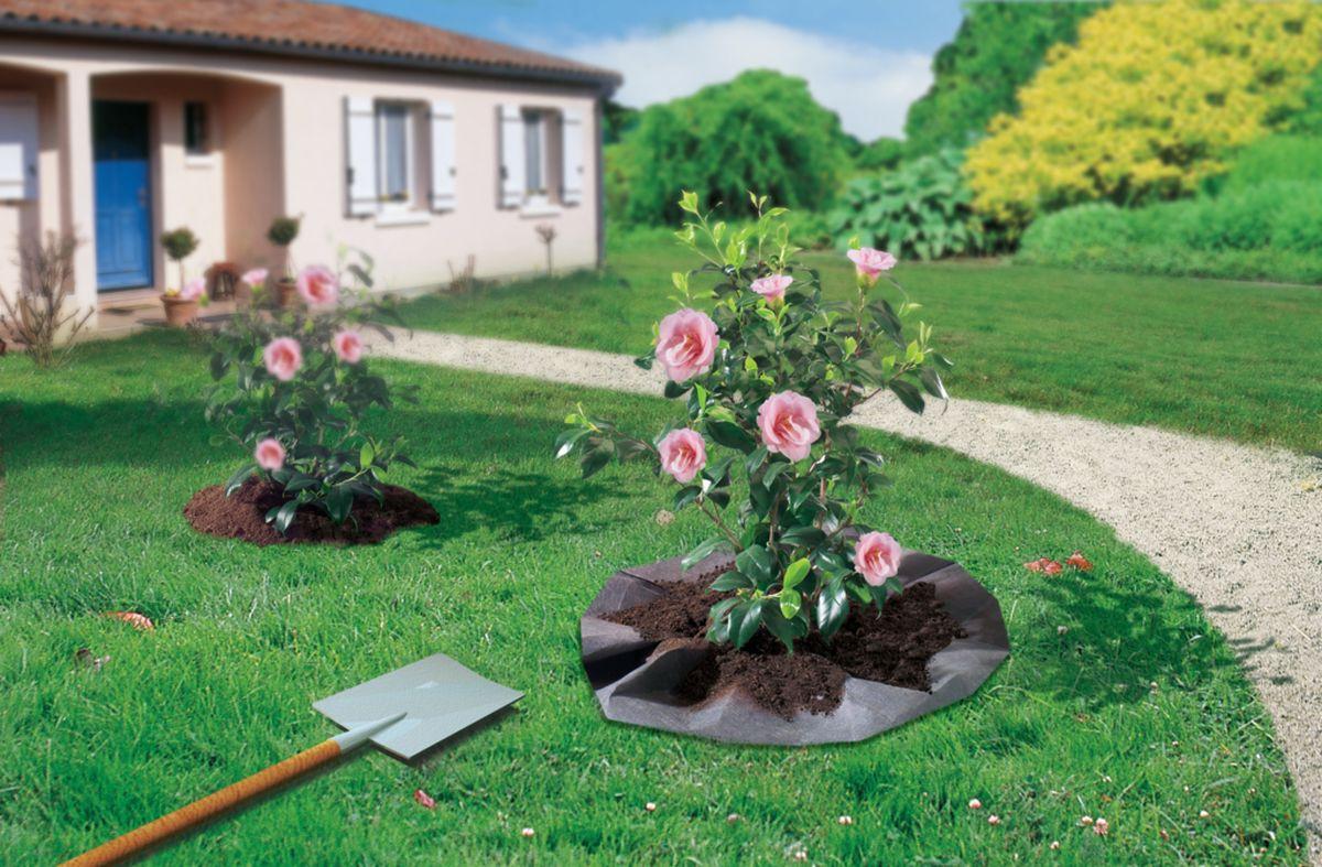 Feutre de plantation pour arbustes terre de bruyère \