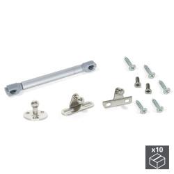 Lot de 10 pistons pour portes à battant pour meubles force 6 kg et course 80 mm de marque EMUCA, référence: B4869300