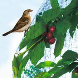 Filet de protection oiseaux EASYNET de marque NORTENE , référence: J411100