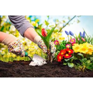 Outils à main pour planter et travailler le sol